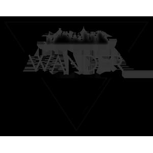 Wander, le jeu vidéo qui a gagné le Prix des Esiearques au Forum des Projets Informatiques de janvier 2016